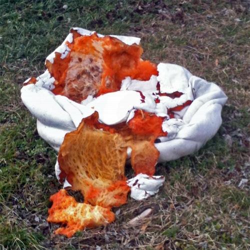 Pumpkin guts