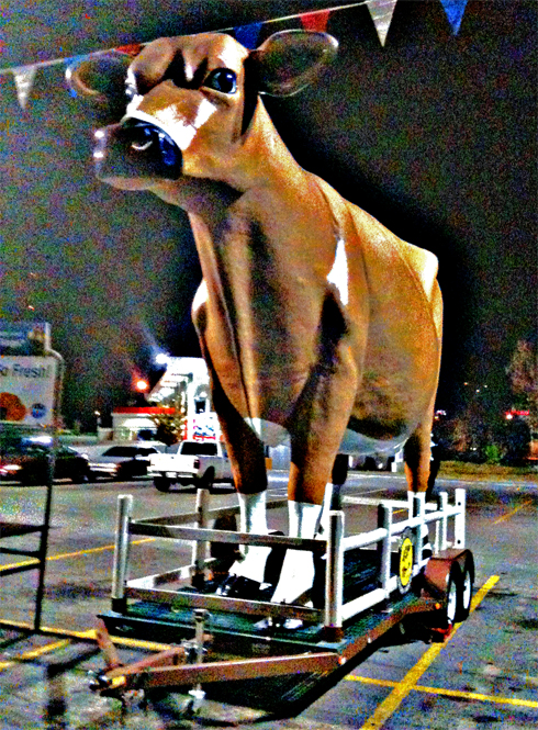Large cow in parking lot of Fellini Kroger in North Knoxville, TN