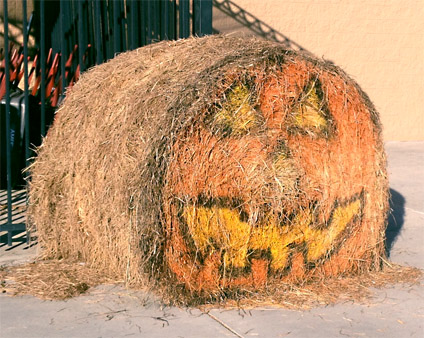 Happy Bale-o-ween or is that Straw-o-latern?
