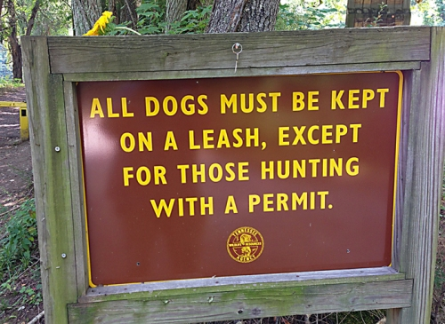 Inquiring minds want to know where the hunting dogs keep their permit so that it is easily available? Plus, how many dogs can hunt on one permit?