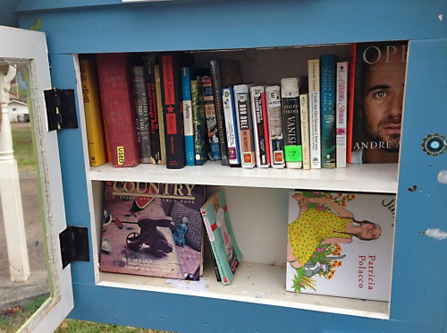 Thank you to all those who have helped to keep the Little Free Library in my neighborhood going.