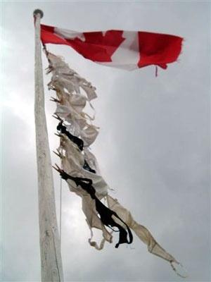 underwear up flagpole2