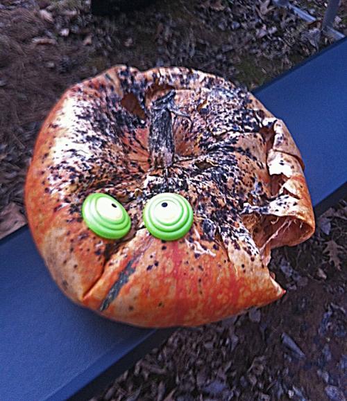 Ode from a deliquescing pumpkin