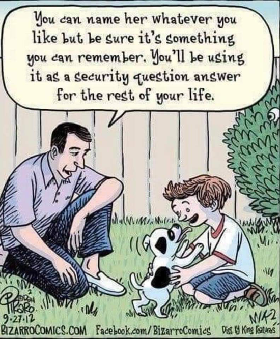 cartoon about password, security question